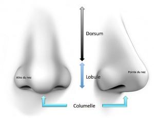 shéma rhinoplastie médicale